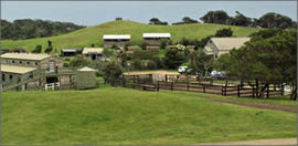 Ace Hi Riding Ranch - eAccommodation
