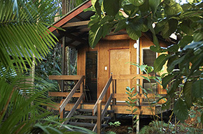 Cape Trib Beach House - eAccommodation