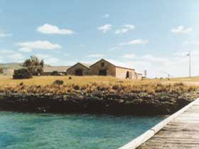 Mt Dutton Bay Woolshed Hostel - eAccommodation