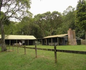 Tree Fern Lodge - eAccommodation