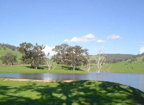 Hillview Farmstay - eAccommodation
