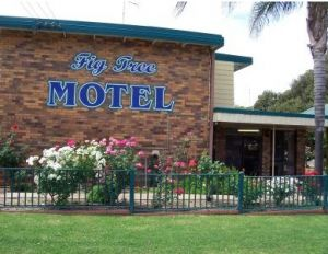 Fig Tree Motel - eAccommodation
