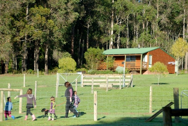 Diamond Forest Farm Stay - eAccommodation