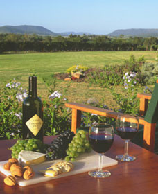 Tranquil Vale Vineyard Cottages - eAccommodation