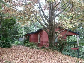 Turkeys Nest Rainforest Cottage - eAccommodation