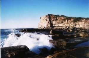 Terrigal Lagoon Bed and Breakfast - eAccommodation