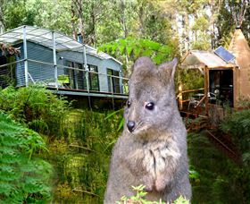 Huon Bush Retreats - eAccommodation