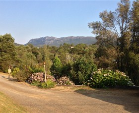 Rosebery Cabin and Tourist Park - eAccommodation