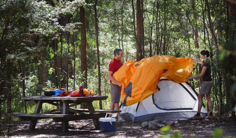 Bald Rock campground and picnic area - eAccommodation