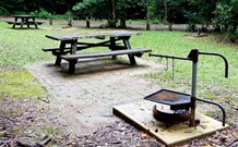 Bellbird campground - eAccommodation