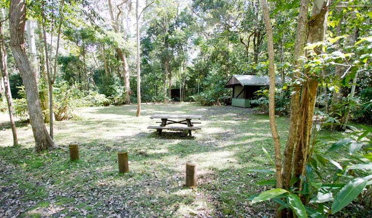 Iron Pot Creek campground - eAccommodation