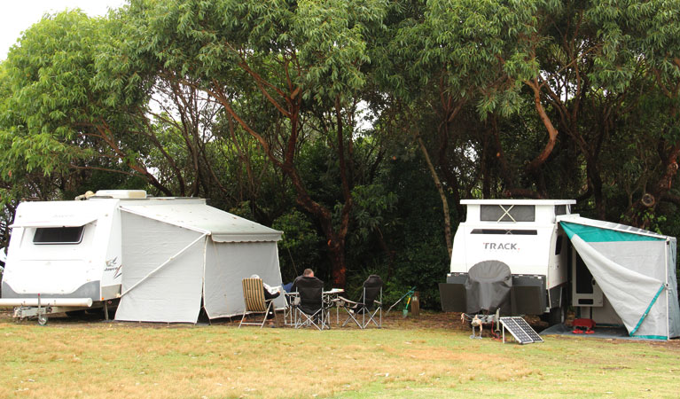 Pretty Beach campground - Murramarang National Park - eAccommodation