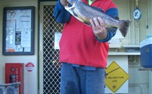Rainbow Pines Tourist Caravan Park - eAccommodation