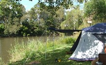 Williams River Holiday Park - eAccommodation