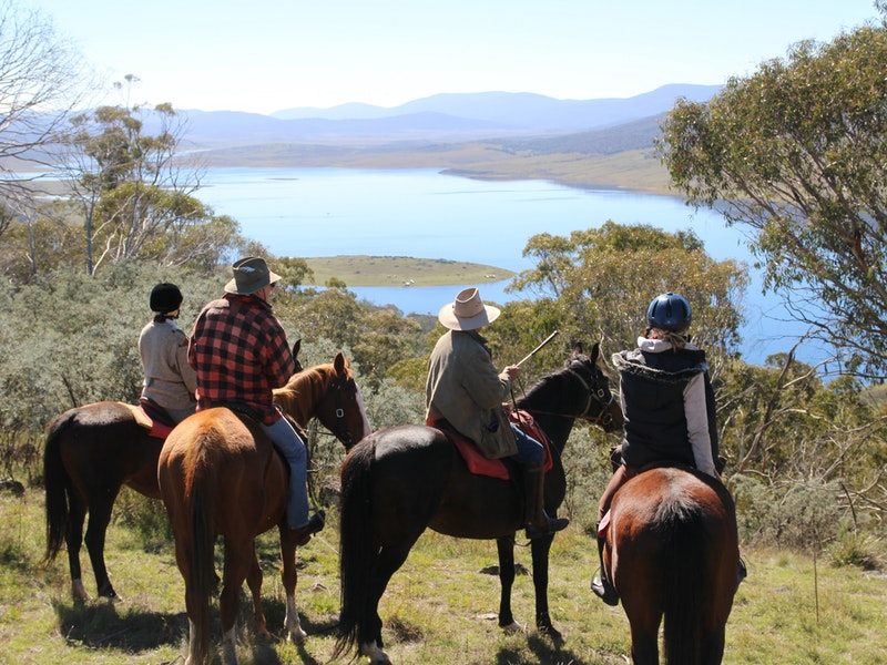 Reynella Homestead and Horseback Rides - eAccommodation