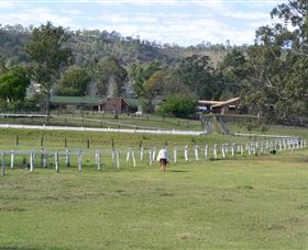 Kellarni Downs Farmstay-Scenic Rim - eAccommodation