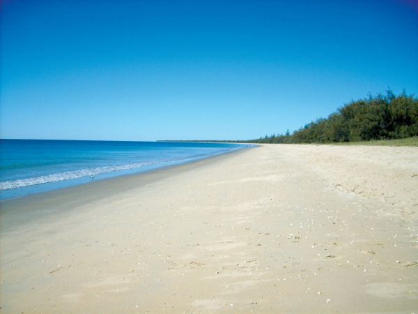 Woodgate Beach Tourist Park - eAccommodation