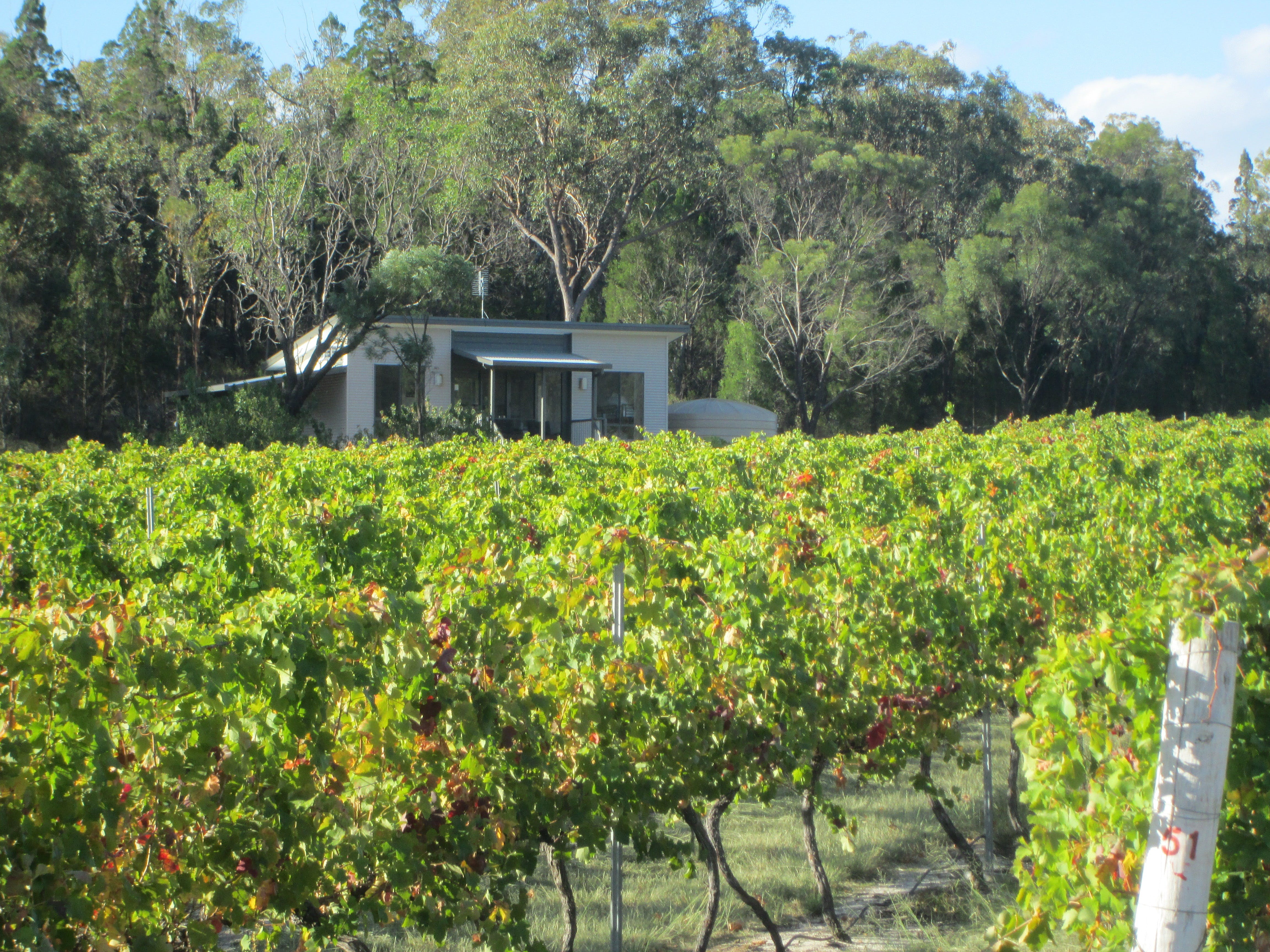 Just Red Wines Vineyard Cabins - eAccommodation