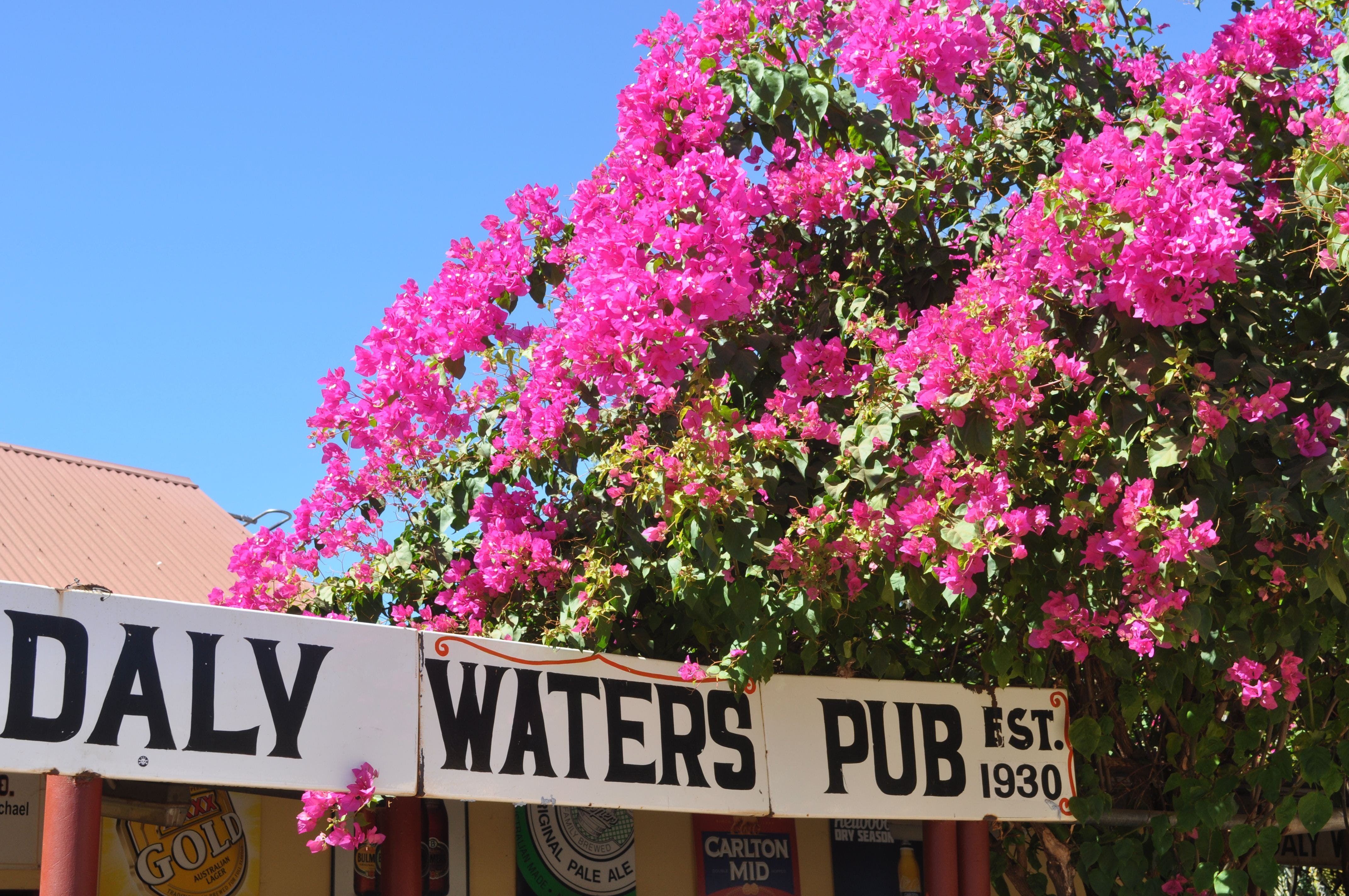 Daly Waters Historic Pub - eAccommodation