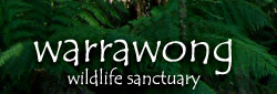 Warrawong Wildlife Park - eAccommodation