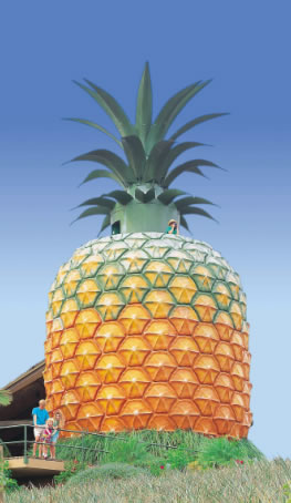 The Big Pineapple - eAccommodation