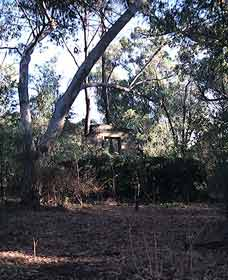 Ghost House Walk Trail Yanchep National Park - eAccommodation
