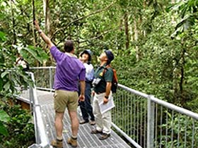 Daintree Discovery Centre - eAccommodation
