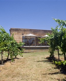 Shantell Vineyard - eAccommodation