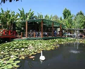 Blue Lotus Water Garden - eAccommodation