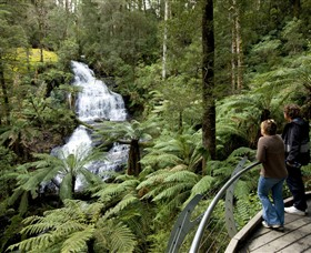 Great Otway National Park - eAccommodation