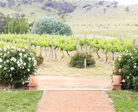 Brindabella Hills Winery - eAccommodation