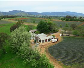 Schmidts Strawberry Winery - eAccommodation