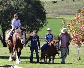 Bathurst Farm Experience - eAccommodation