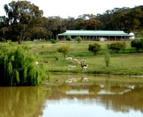Clearview Alpacas - eAccommodation