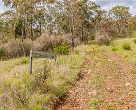 Old Mountain Road Walking Track - eAccommodation