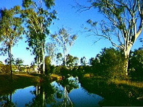 Dingo Creek Park - eAccommodation