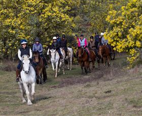 Burnelee Excursions on Horseback - eAccommodation
