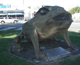 Big Cane Toad - eAccommodation