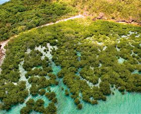 The Singapore Shipwreck Dive Site - Keswick Island