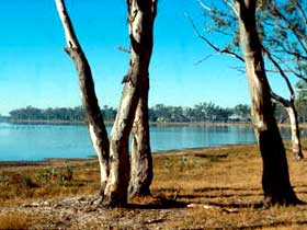 Lake Broadwater Conservation Park - eAccommodation