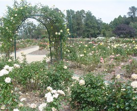 Victoria Park Rose Garden - eAccommodation