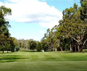 Cooma Golf Club - eAccommodation