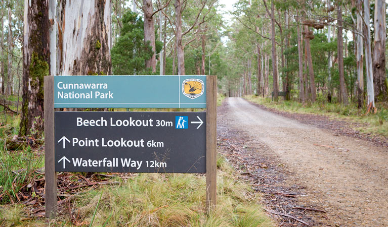 Beech lookout - eAccommodation