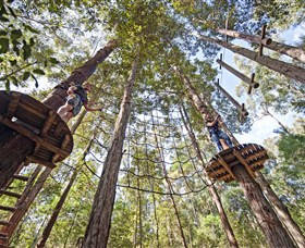 TreeTop Adventure Park Central Coast - eAccommodation