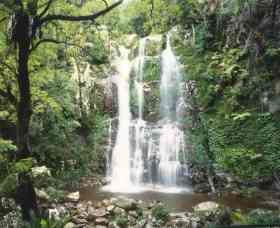 Budderoo National Park - The Falls Walk - eAccommodation