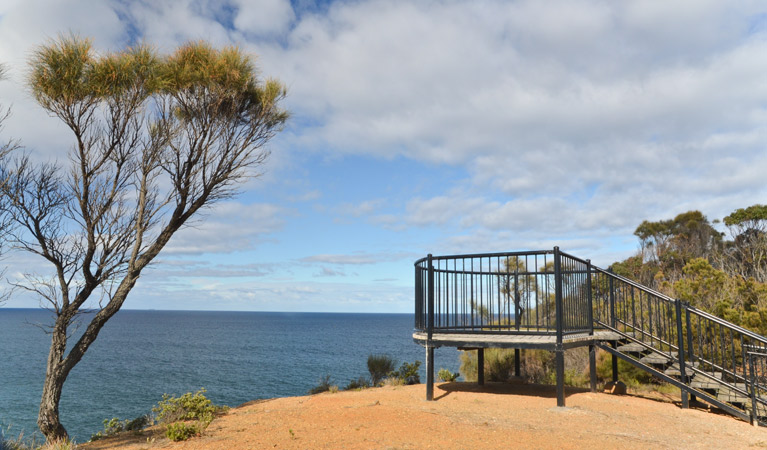 North Head lookout - eAccommodation