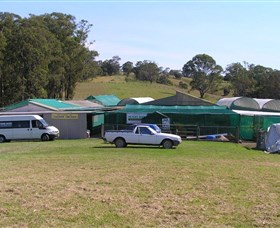 Tinonee Orchid Nursery - eAccommodation