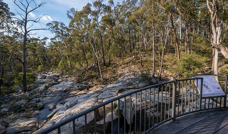 Myanba Gorge walking track - eAccommodation