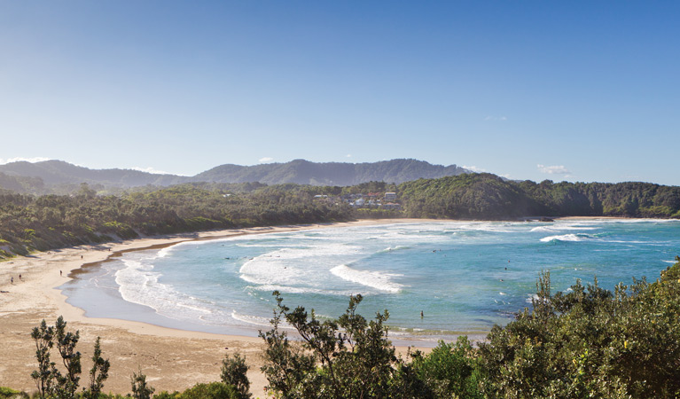 Coffs Coast Regional Park - eAccommodation