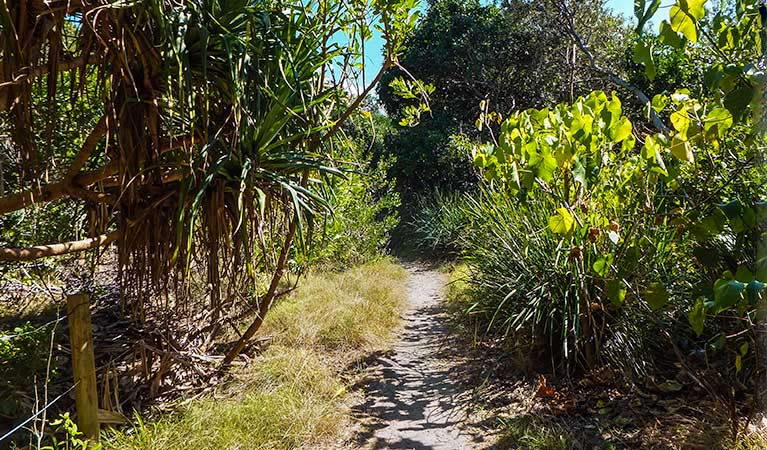 North Head walking track - eAccommodation